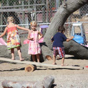 Preschoolers balancing on self created see saw